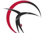 olimpik akademi cimnastik spor kulubu